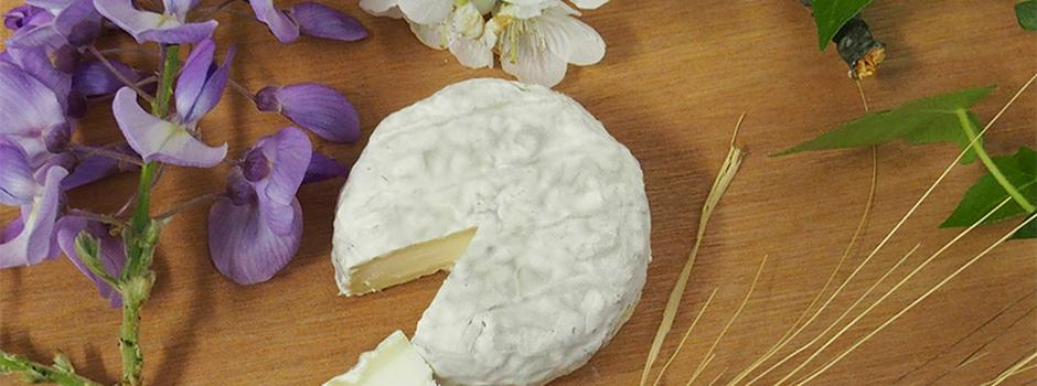 fromages-drome-montvendre-sonia.jpg