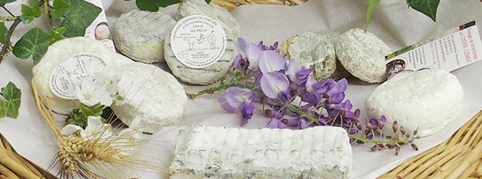 fromages-tomme-drome-GAEC-Chovin.jpg